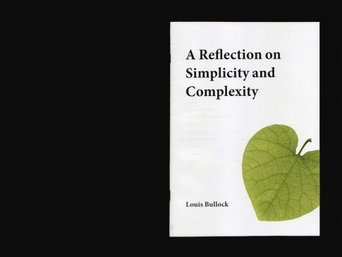 A Reflection on Simplicity and Complexity